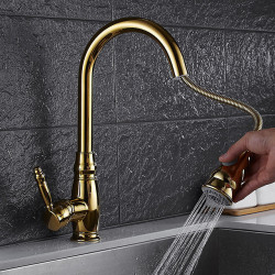 Kitchen faucet - Contemporary Ti-PVD Pull-out,Pull-down Vessel,Brass,Single Handle One Hole